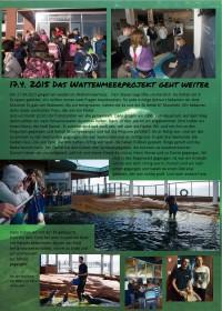 Seite: Seehunde im Aquarium