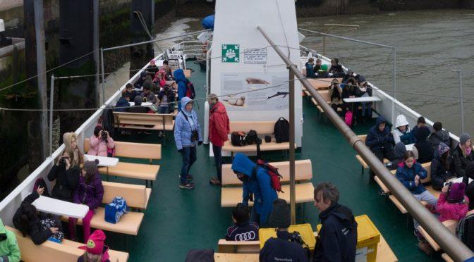 Schifffahrt im Regen